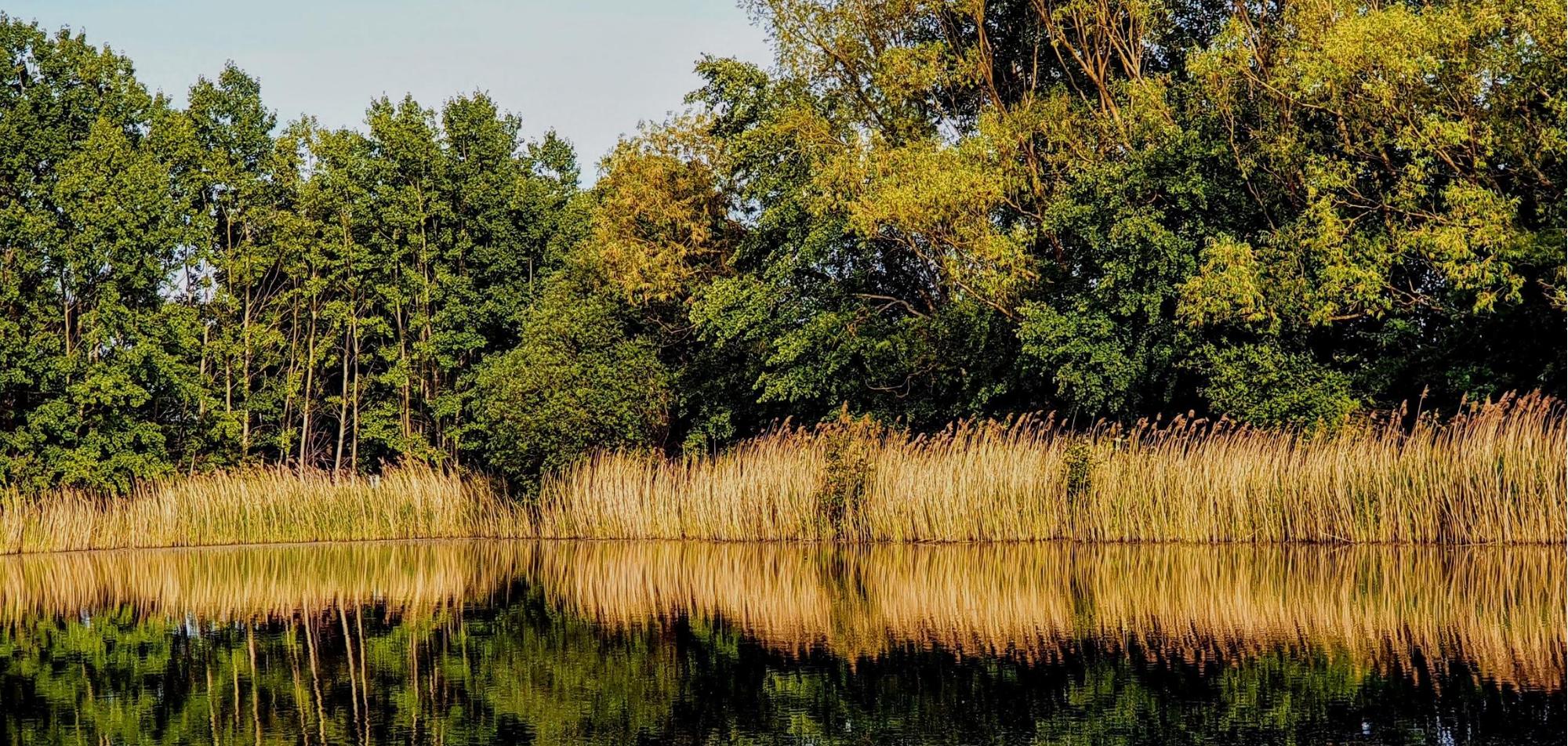 Lake-Barrington-Remodeling
